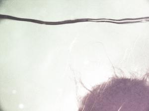 angelcapelli-23web-ph.rossellaviti